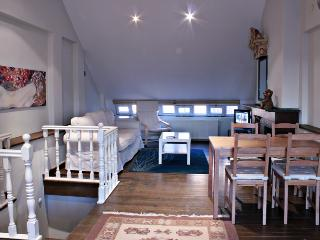 Studio in the Heart of the City 2 - Istanbul vacation rentals