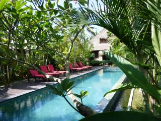 Bali Harmony Amazing RiceField View Villa from $99 - Ubud vacation rentals