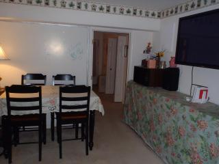 800 SQ FT  Townhouse Basement - Frederick vacation rentals