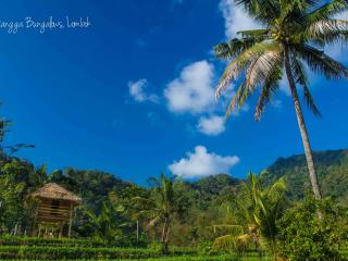 Lombok Hut with Waterfall and Rice Paddy Views - Lombok vacation rentals