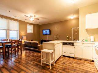 Cozy Penthouse Apartment - At Downtown Memphis - Memphis vacation rentals