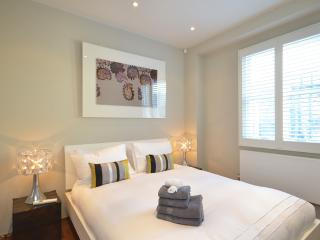 A two bed town house with a roof terrace - London vacation rentals