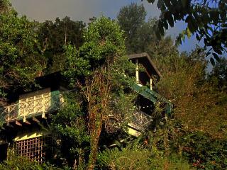 Tree Tops Cottage - Saint Andrew Parish vacation rentals