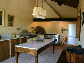VIGNE - Siena vacation rentals
