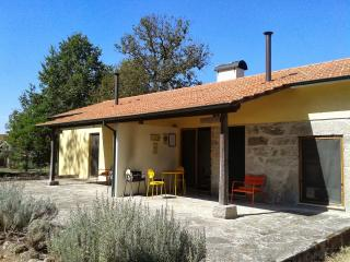 Beautiful cottage on the foothills of the mountain - Gouveia vacation rentals