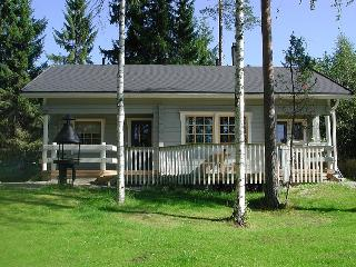 2 bedroom Cottage with Internet Access in Laukaa - Laukaa vacation rentals