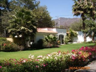 Ajijic Condo #2 at Lake Chapala - Ajijic vacation rentals