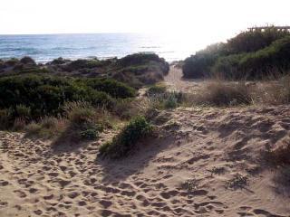The Dunes ;Superb Marbella  beachside  penthouse - Marbella vacation rentals