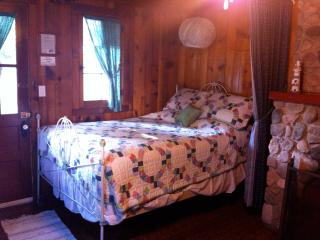 2 bedroom Cottage with Short Breaks Allowed in Ludington - Ludington vacation rentals