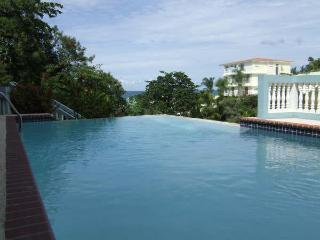 Penthouse Walking Distance to Sandy Beach - Anasco vacation rentals