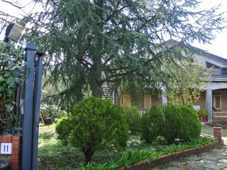 Typical restructured house near Etna volcano - Pedara vacation rentals