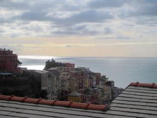 Charming 2 bedroom Apartment in Manarola - Manarola vacation rentals