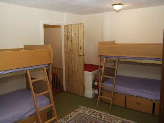 Nice Cottage with Alarm Clock and Towels Provided - Tanygrisiau vacation rentals