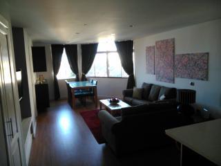 Lovely 2 bedroom Condo in Adeje - Adeje vacation rentals