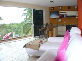 Penthouse Dream Mayan/Paradise Village,Nuevo Valla - Nuevo Vallarta vacation rentals