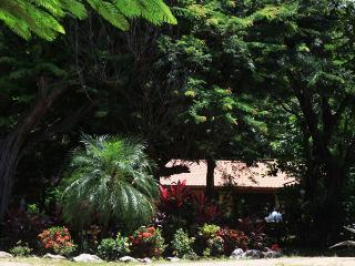 Casa Kalana - just 250 yards to the Pacific Ocean! - Playa Negra vacation rentals