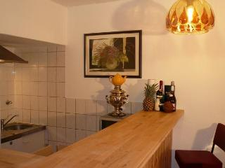 CR100OFF - Gemütliche Wohnung zum Wohlfühlen - Offenbach vacation rentals