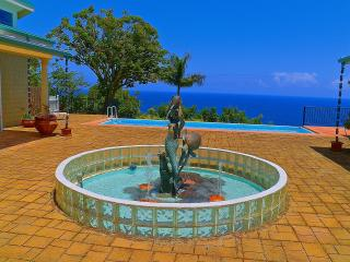 Ocean Front Luxury - Private Pool - - Hilo vacation rentals