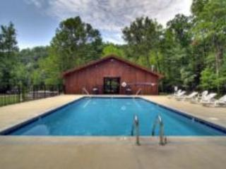 MF 1 - Pigeon Forge vacation rentals