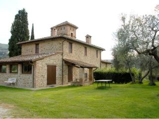 TORRIONE - Paciano vacation rentals