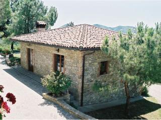 MonteLimo - Citta di Castello vacation rentals