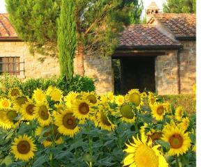 Piresso - Cortona vacation rentals