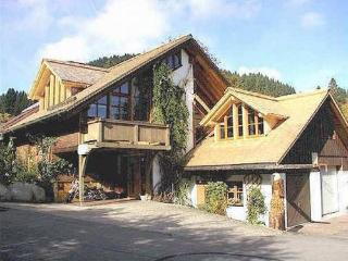 LLAG Luxury Vacation Apartment in Feldberg - 861 sqft, bright, comfortable, friendly (# 4963) - Freiburg im Breisgau vacation rentals