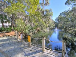 Newly Updated, Private Back Deck. Free Bikes Pool Tennis Pet Friendly - Hilton Head vacation rentals
