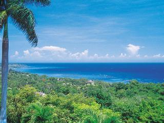 Elegant 3 Bedroom Villa in Montego Bay - Saint James Parish vacation rentals