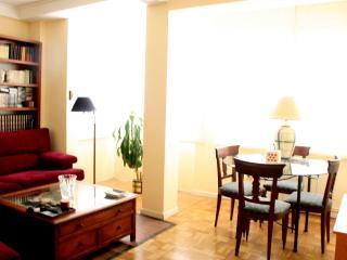 Apartment Rosales-Princesa - Madrid vacation rentals