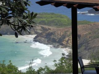 Unique 4 Bedroom Villa with Private Pond in Mustique - Mustique vacation rentals
