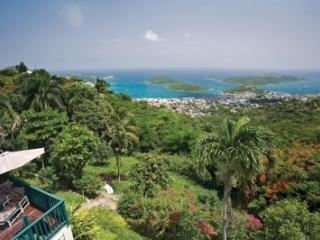Elegant 2 Bedroom Hillside Mansion on St. Thomas - Saint Thomas vacation rentals