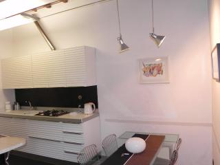 MATTEO  Apart. FLORENCE CENTER all conforts new remodelled - Florence vacation rentals