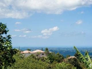 Utuado Mountain Home - Casa Cielo with Wi-Fi - Utuado vacation rentals