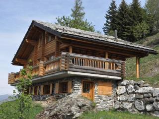 Alpen Rose - Nendaz vacation rentals