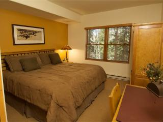 Bear Creek Lodge 205B - Mountain Village vacation rentals