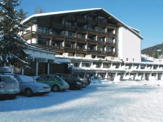 Ski,golf, adventure pretty flat Maria Alm ,Austria - Hinterthal vacation rentals