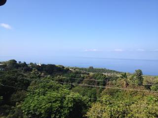 Kona Coffee Condo - Honalo vacation rentals