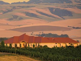 Luxury Stays in the Vineyard - Walla Walla vacation rentals