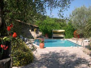 Luxury  Apartment in villa with pool 20 mins Nice - Isola vacation rentals