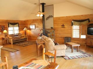 Beautiful Cabin with Dishwasher and Garden - Davis vacation rentals