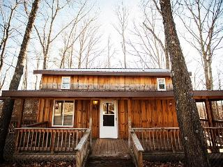 Chestnut Hilltop Cabin - Stanton vacation rentals