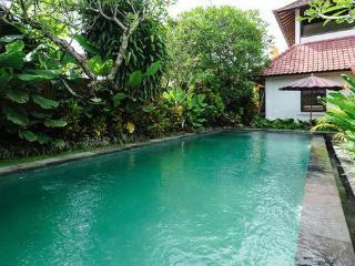 Chillin'Villa at Strategic Location - Nusa Dua vacation rentals