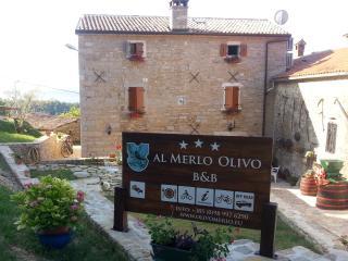 """""""Al Merlo Olivo"""" 3*** rural house - Buje vacation rentals"""