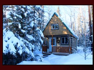 Alaska Wildlife Cabins and Hostel - Get the true feeling of Alaska - Enjoy Wildlife and the gorgeous Northern Lights - Fairbanks vacation rentals