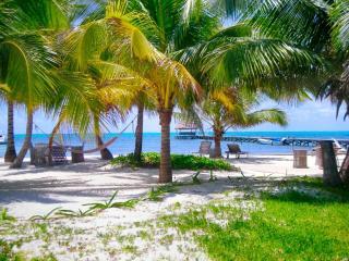 Adorable 1 bedroom condo on private beach! -A3 - San Pedro vacation rentals