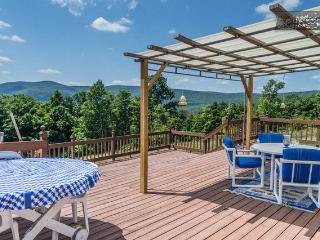 East Durham, Windham, Zoom Flume And Tree House - Preston Hollow vacation rentals