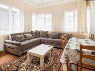Incredibly Lower Price,Central Flat - Istanbul vacation rentals