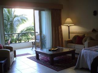 Playa Royale Studio - Nuevo Vallarta vacation rentals