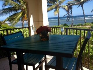 ISLAND PARADISE - A TRUE BEACH FRONT VACATION - Woodston vacation rentals